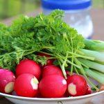 京ラフランとは?ハーフ野菜の食べ方や栄養は?旬や通販もまとめ!