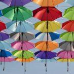 ポキッと折れるんですは強風や台風対策の雨傘!通販や販売店は?
