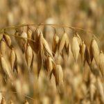 門脇麦が入院した急性喉頭蓋炎とは?インスタの公式なものはある?