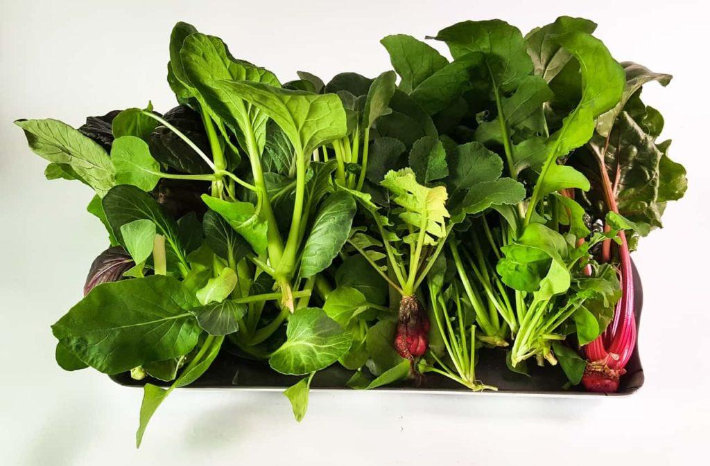 野菜-工場野菜