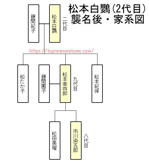 松本白鸚-家系図